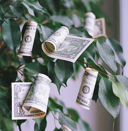 Auto Recyclers - Who Says Money Doesn't Grow on Trees? f post re
